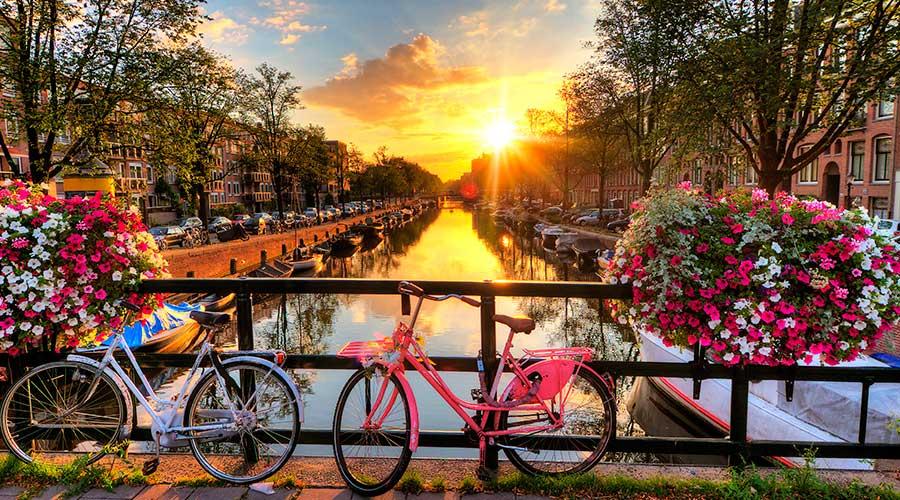Viaggio di Nozze in Olanda