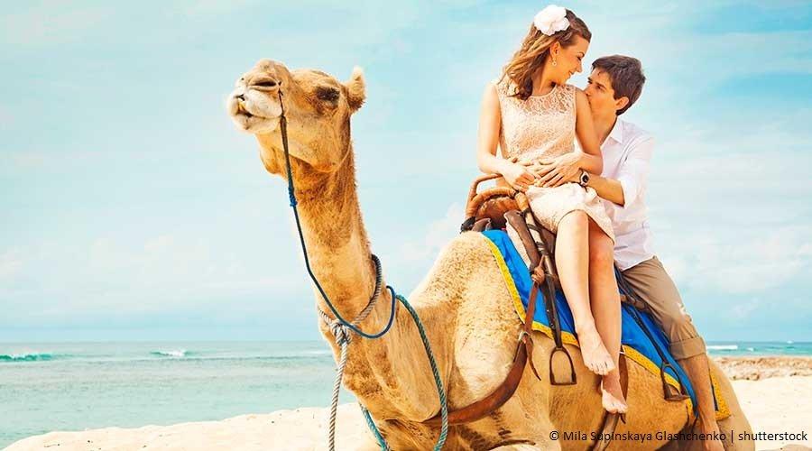 Viaggio di Nozze in Egitto